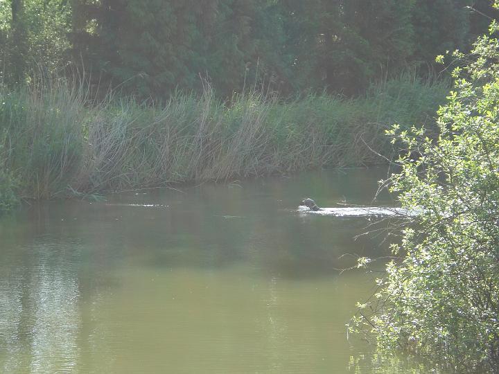 2007-05-19-waterwerk-01
