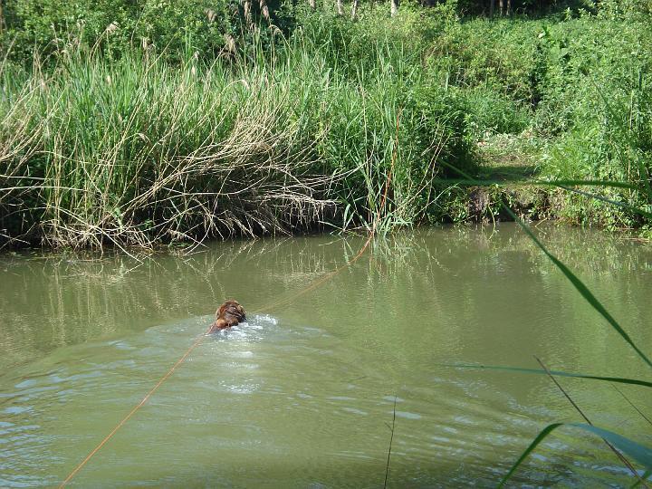 2007-05-19-waterwerk-05