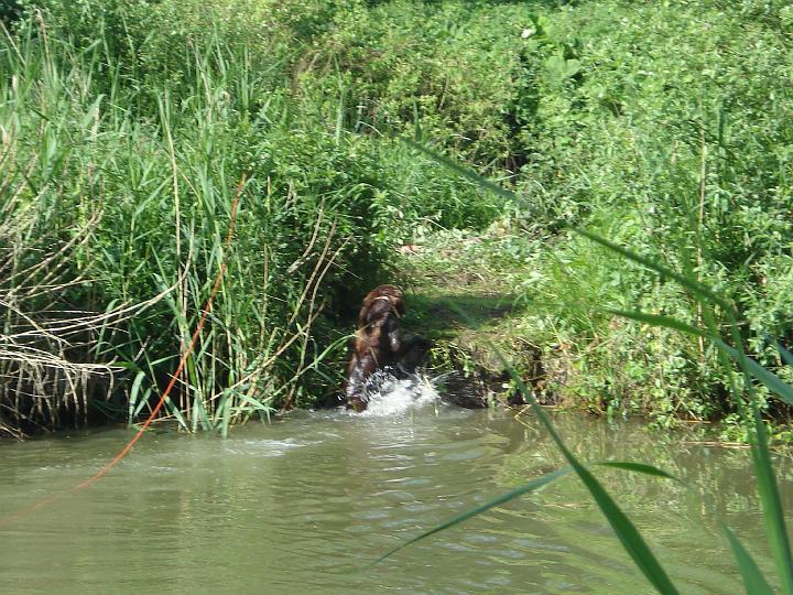 2007-05-19-waterwerk-06