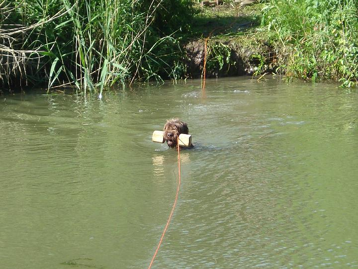2007-05-19-waterwerk-10