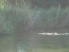 2007-05-19-waterwerk-02