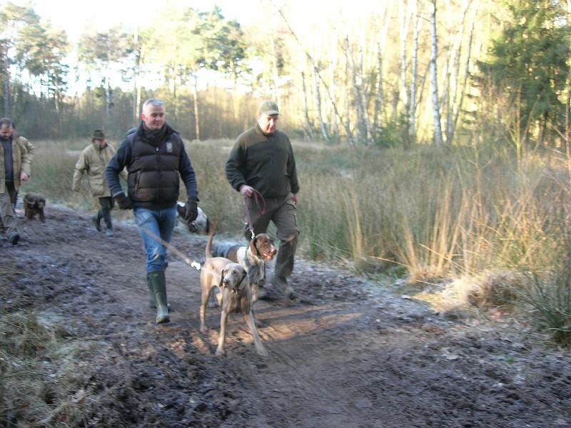 hondenschool-wandeling-16-februari-2008-021