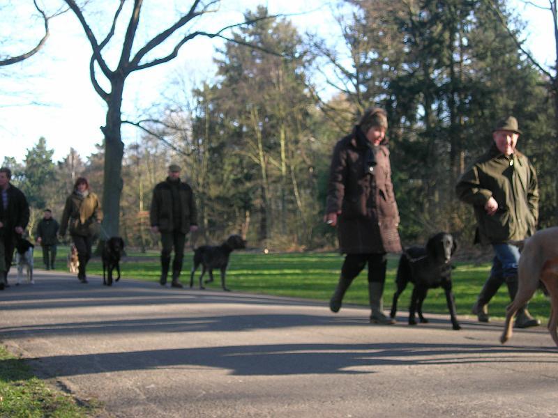 hondenschool-wandeling-16-februari-2008-045