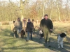 hondenschool-wandeling-16-februari-2008-013