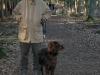 hondenschool-wandeling-16-februari-2008-023