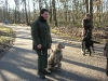 hondenschool-wandeling-16-februari-2008-025
