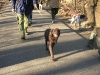 hondenschool-wandeling-16-februari-2008-035