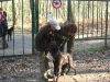 hondenschool-wandeling-16-februari-2008-066